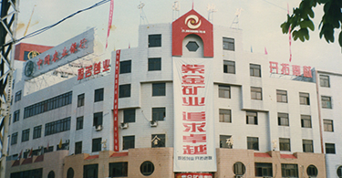 1993年至2000年为公司第一轮创业发展时期